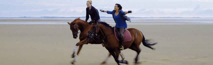Of Girls and Horses -- HEADER