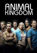 Animal Kingdom | Drama-Serie seit 2009 -- schwul, lesbisch, Bisexualität, Homosexualität im Fernsehen, Stream, deutsch, alle Folgen